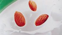 ecommil-mandoral-almond-milk